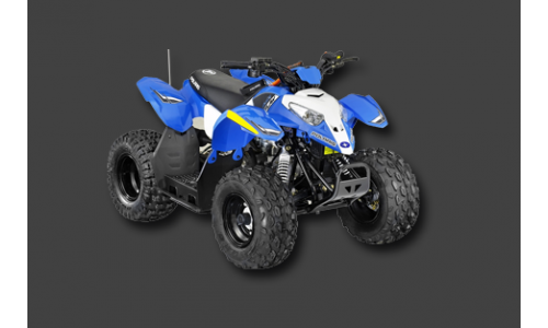 Квадроцикл POLARIS OUTLAW 90 (2014)